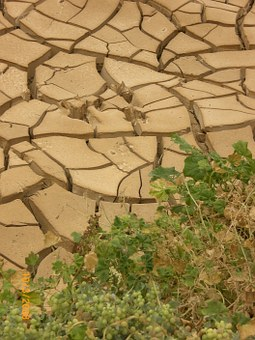 drought-277453__340
